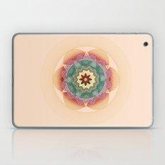 spiro 2 Laptop & iPad Skin