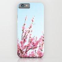 Pink Blossom  iPhone 6 Slim Case