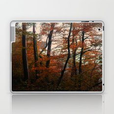 Autumn in the woods 3 Laptop & iPad Skin