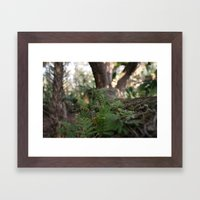 Tree Shrubs Framed Art Print