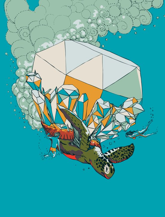 TURTLE& THE DIAMONDS Canvas Print