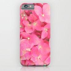 Hi Drangea Slim Case iPhone 6s