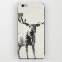 winter moose iPhone & iPod Skin