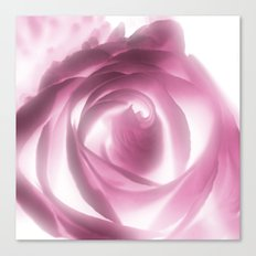 Rose Xray Canvas Print