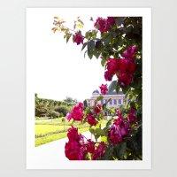 Paris Jardin des Plantes Roses Art Print