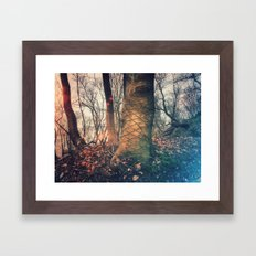 Scars of a life Framed Art Print