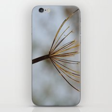 Cow Parsley In the Snow iPhone & iPod Skin