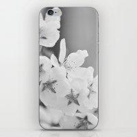 Blooming Softly iPhone & iPod Skin
