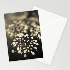 Summer Lace Stationery Cards