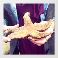 Canvas Print featuring Starfish by rachellam