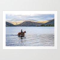 Horse At Airds Bay Loch … Art Print