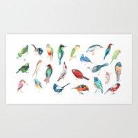 Wild Birds Art Print