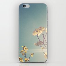 White Light iPhone & iPod Skin