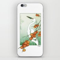 Egret And Persimmons iPhone & iPod Skin