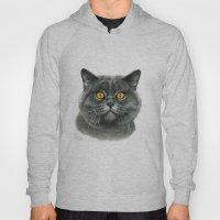 British Shorthair Cat  G… Hoody