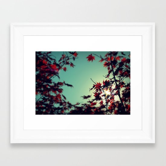 Autumn's Delight Framed Art Print