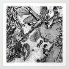 Ice and Mud Art Print