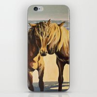 Martha's Ponies iPhone & iPod Skin