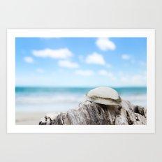 Sally Sold Sea Shells Art Print