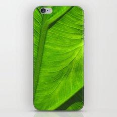 Tropical Green iPhone & iPod Skin