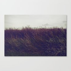 Autumn Field V Canvas Print