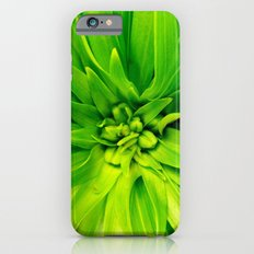 Lily's heart iPhone 6s Slim Case