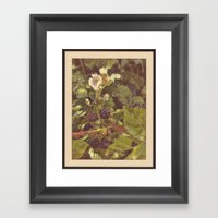 Summer #2 Framed Art Print