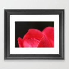 Soft... Framed Art Print