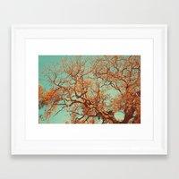 Orange. Framed Art Print