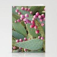 Desert Fruit Stationery Cards