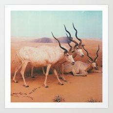 Museum Wildlife II Art Print