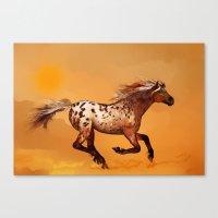 HORSE - An Appaloosa Cal… Canvas Print