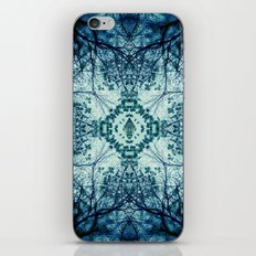 Searching iPhone & iPod Skin