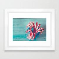 Aqua Holidays, Christmas Photography Framed Art Print