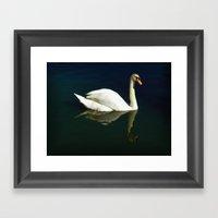 Beautiful Swan Framed Art Print