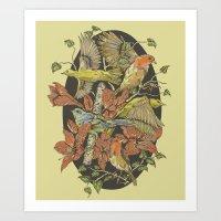 Robins And Warblers Art Print