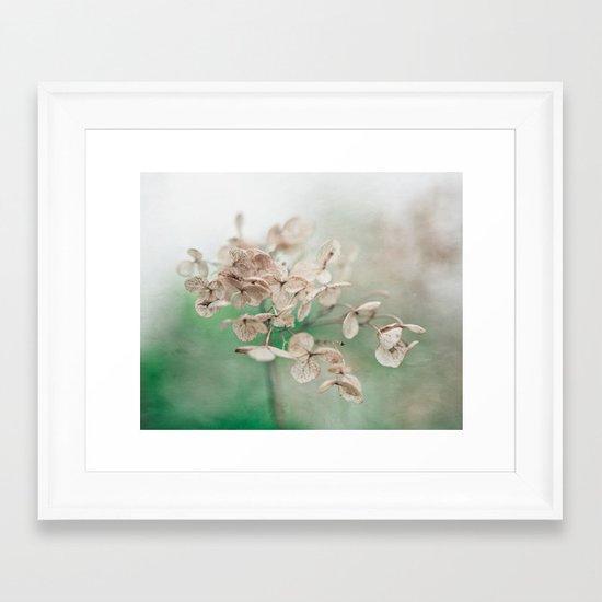 Little Furrows  Framed Art Print