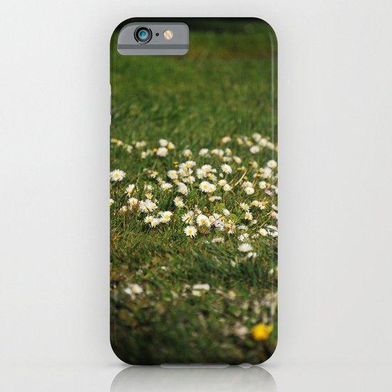 Dasies iPhone & iPod Case