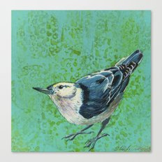 White Breasted Nuthatch Canvas Print