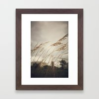 Wild Oats to Sow Framed Art Print