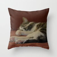 Cat Paws Throw Pillow