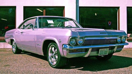 Silver Impala Art Print