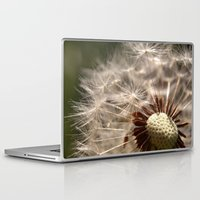 Laptop & iPad Skin featuring Half Blown Away by Serenity Photography
