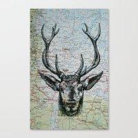 Russian Deer Canvas Print