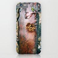 iPhone & iPod Case featuring La Gran Sabana by David Hernández-Palmar