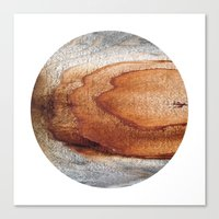 Planetary Bodies - Rust … Canvas Print