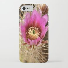 Cacti Flower iPhone 7 Slim Case