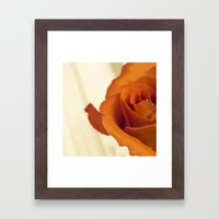 Autumn Rose Framed Art Print