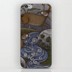 Swamp Rabbit's Reedy River Race iPhone & iPod Skin