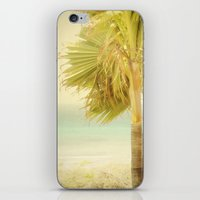 Palm Trees Always Whispe… iPhone & iPod Skin